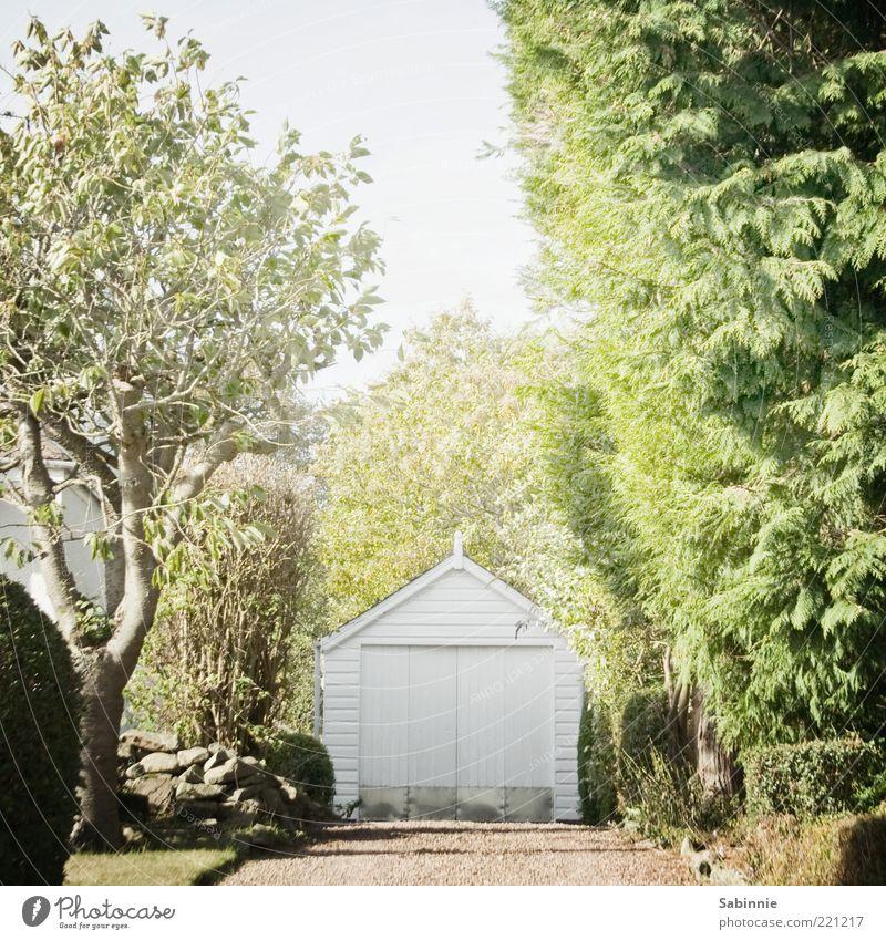 Gärätsch Häusliches Leben Haus Garage Garagentor Sommer Schönes Wetter Pflanze Baum Gras Sträucher Grünpflanze Nutzpflanze Garten Aberdeen Schottland Dorf