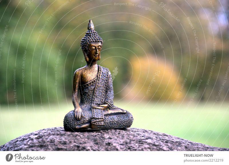 Die Rückkehr zum Ursprung ist Stille... schön Gesundheit Gesundheitswesen Alternativmedizin Gesunde Ernährung Wellness Leben harmonisch Zufriedenheit Erholung