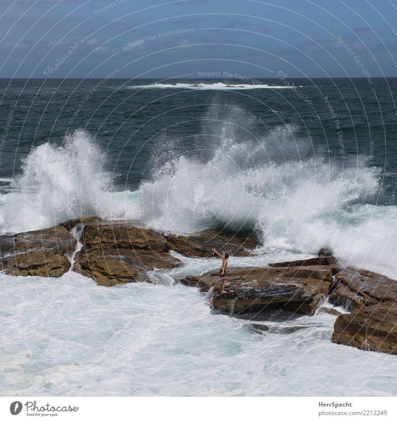 Erfrischung Ferien & Urlaub & Reisen Sommer Sommerurlaub Strand Meer Wellen Umwelt Natur Landschaft Schönes Wetter Küste Riff Pazifik Schwimmen & Baden