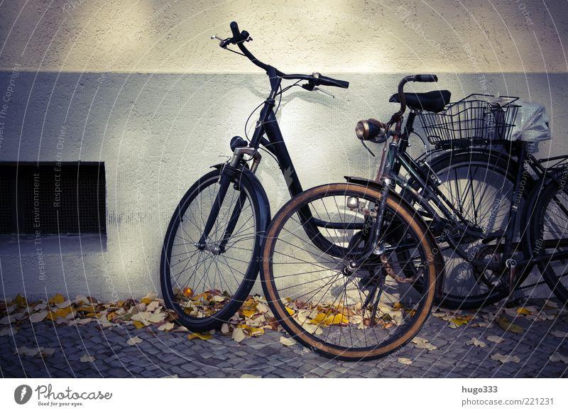 Berlin VIII Fahrrad Blatt Haus Bürgersteig Mauer Wand Verkehrsmittel Damenfahrrad stehen einfach 2 Korb Fahrradsattel schwarz Herbst Pedal parken anlehnen