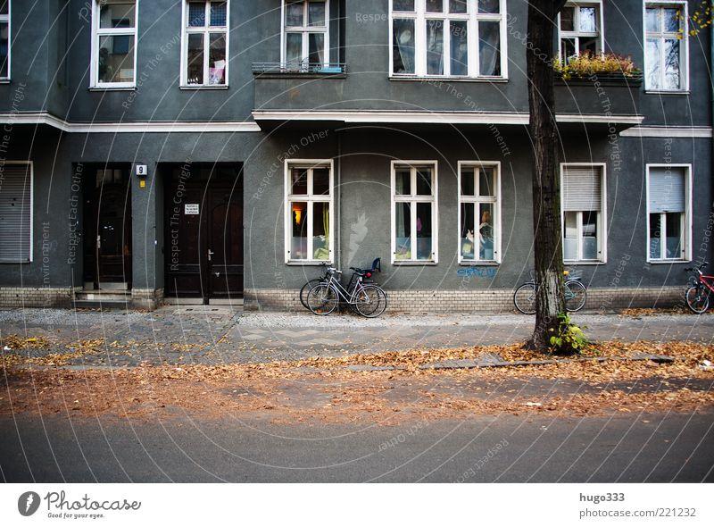 Berlin IX Stadt Baum Blatt Haus Straße Fenster Herbst hell Tür Fassade Häusliches Leben trist Schönes Wetter Bürgersteig Balkon