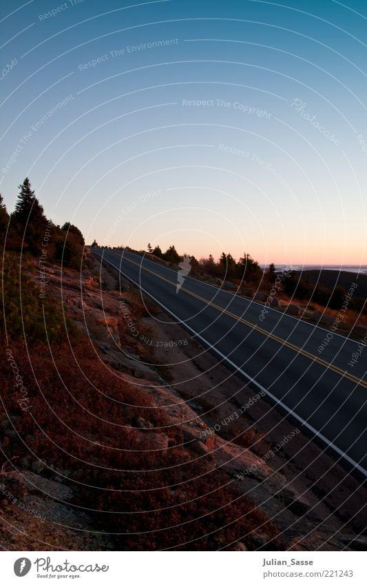 Straße im Sonnenuntergang Umwelt Natur Landschaft Pflanze Urelemente Erde Sand Luft Himmel Wolkenloser Himmel Sonnenaufgang Sonnenlicht Herbst Zufriedenheit