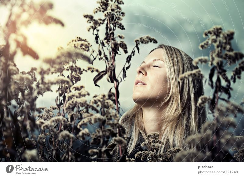 dreaming of a white christmas Natur Jugendliche schön Pflanze Gesicht Erholung Herbst feminin Gefühle Glück träumen Denken blond Erwachsene Romantik Sträucher