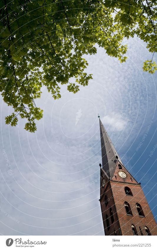 aus Himmel ruhig Blatt Wolken Denken Religion & Glaube nachdenklich Schönes Wetter Kirche Neigung Zweige u. Äste Gotteshäuser Kirchturm Kirchturmspitze Wolkenschleier Kirchturmuhr