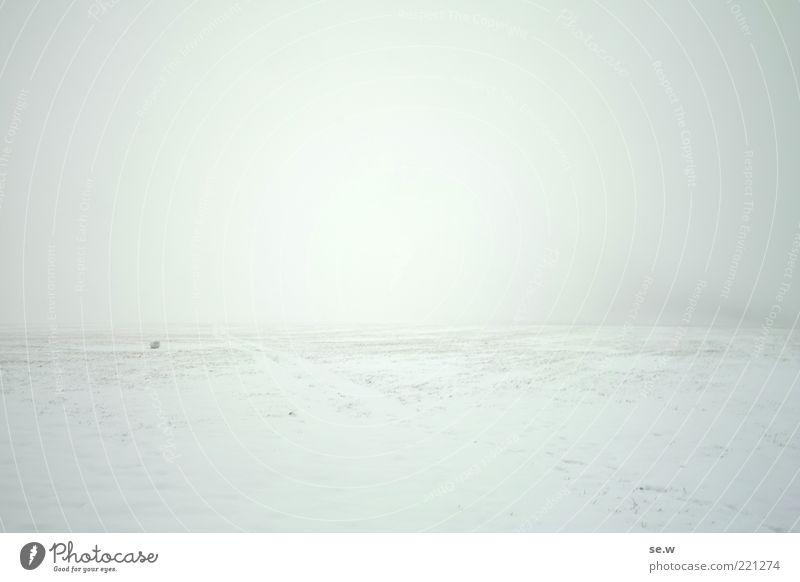 Jenseits Natur weiß Winter Himmel (Jenseits) ruhig Einsamkeit Ferne Erholung kalt Schnee Landschaft Berge u. Gebirge Wege & Pfade Feld Nebel Vergänglichkeit