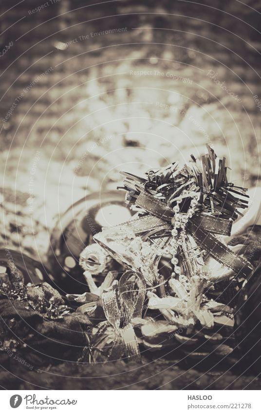 Weihnachten & Advent Blume Winter Kunst Feste & Feiern neu Dekoration & Verzierung weich Jahr Christbaumkugel Material Tradition Schwarzweißfoto Gast Wolle