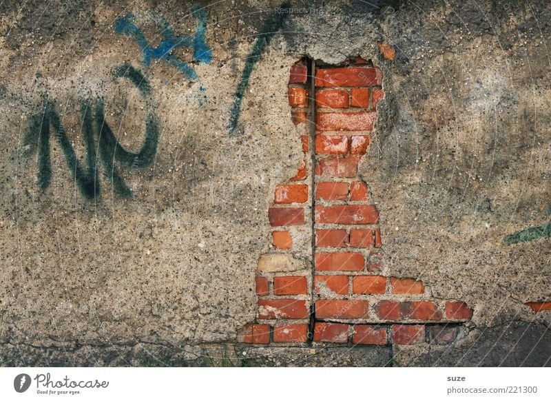 Hauskatze Katze alt Graffiti Wand Mauer lustig Kunst Fassade dreckig authentisch Vergänglichkeit verfallen Backstein Vergangenheit Verfall Figur