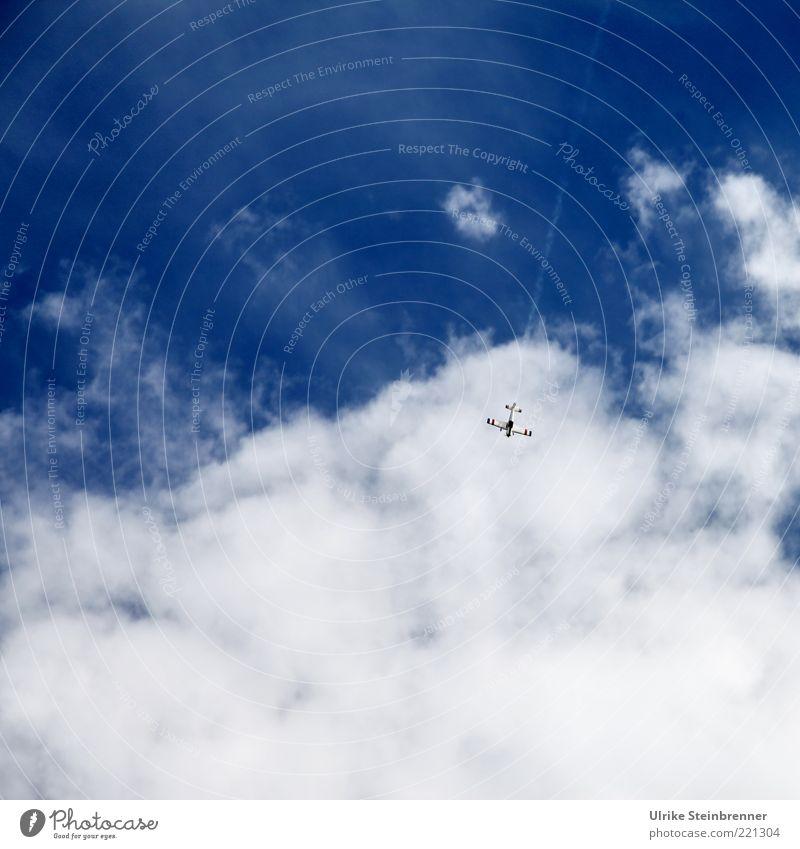 Kamikaze Freizeit & Hobby Spielen Modellbau Luft Himmel Wolken Luftverkehr Flugzeug fliegen blau weiß Sturzflug abwärts Risiko weich Wattewölkchen