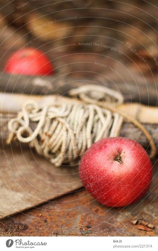 APFELROLLE Natur rot Sommer Ernährung Herbst Holz Linie braun Gesundheit Lebensmittel Frucht Seil frisch rund liegen Apfel