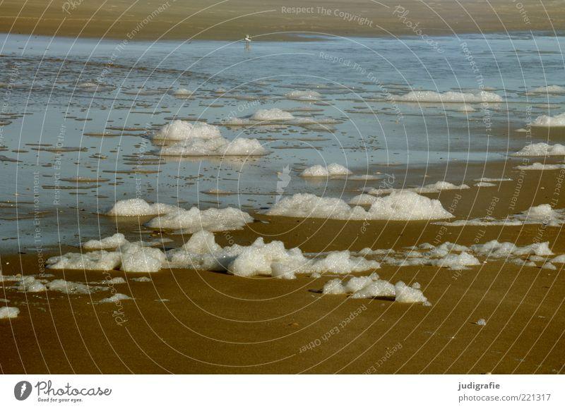 Strandwolken Natur Wasser Meer Sand Stimmung Küste Umwelt nass natürlich außergewöhnlich Nordsee Schaum Gischt