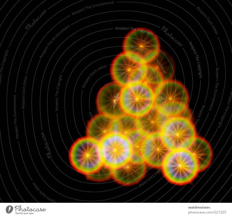 Christmas Tree ästhetisch schön blau gelb grün rot schwarz Weihnachtsbaum Lichterkette Stern (Symbol) Unschärfe Farbfoto mehrfarbig Experiment abstrakt