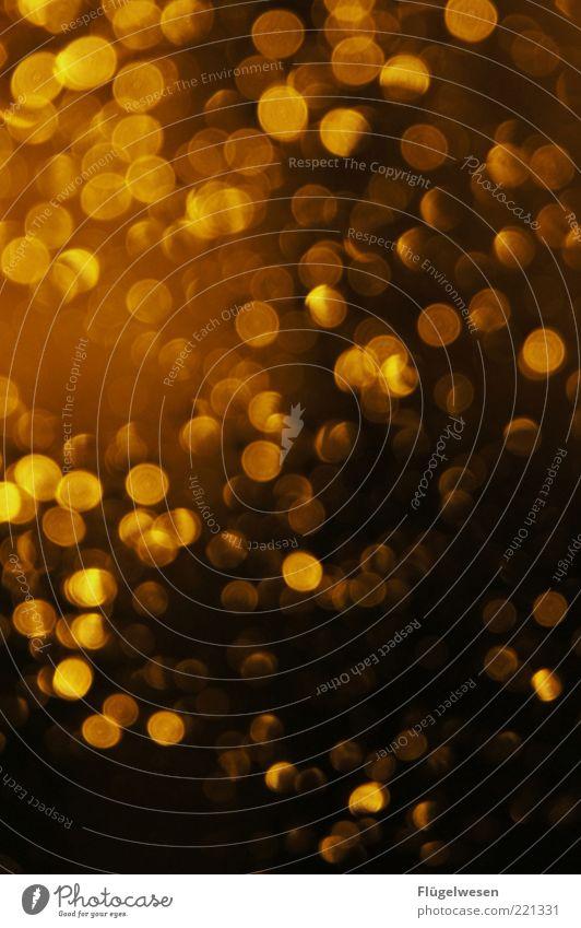 wake me up when september ends leuchten Licht Lichterscheinung Lichtspiel Lichtschein lichtvoll Beleuchtung Regen glänzend Glamour Farbfoto Außenaufnahme Nacht