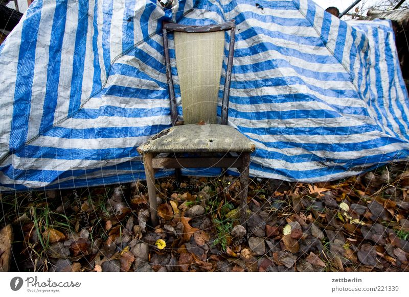 Stuhl Natur alt Blatt Wiese Herbst leer kaputt Müll Streifen Mitte Möbel trashig Sitzgelegenheit Sessel