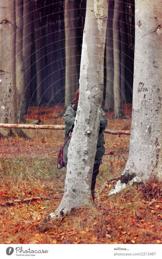Versteckte Fette versteckte Fette Übergewicht Mensch verstecken Baumstamm Wald dick lustig Humor Erwachsene witzig Gespensterwald Nienhagen Naturschutzgebiet