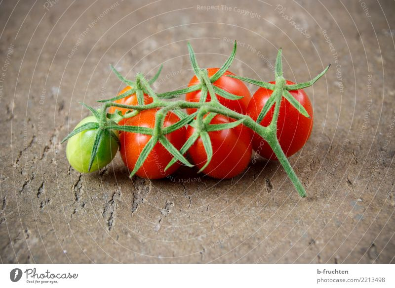 Reifezeit Gemüse frisch Gesundheit grün rot Wachstum Tomate Cocktailtomate Rispentomate reif Bioprodukte Vegetarische Ernährung Picknick natürlich Farbfoto