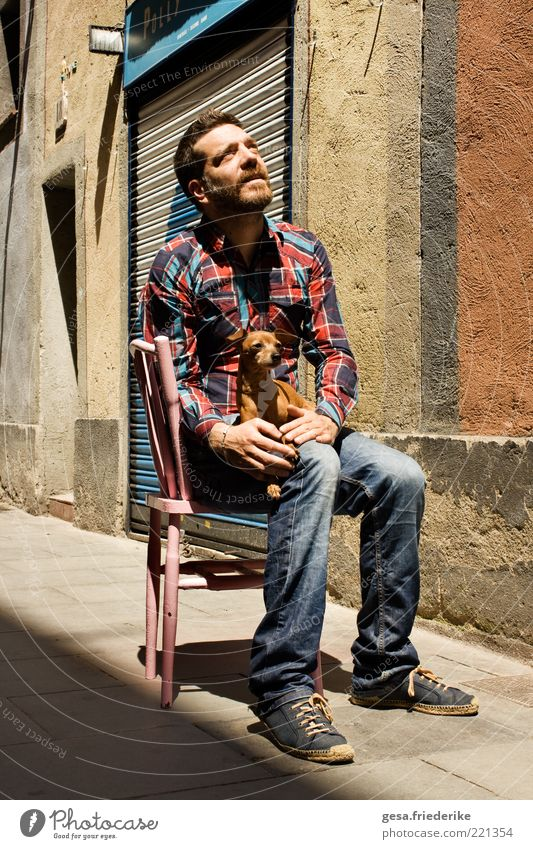 Oh William. It was really nothing. Mensch Tier Haus Leben Hund Stein sitzen Fassade maskulin frei ästhetisch authentisch außergewöhnlich Bekleidung einzigartig Stuhl