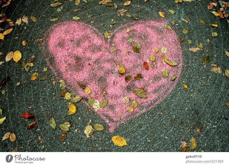 Herbstherz Umwelt Straße Liebe Herz Bürgersteig Asphalt rosa grau gelb grün Straßenkunst Kreativität Gefühle Graz Zuneigung Menschenleer Gemälde herzförmig