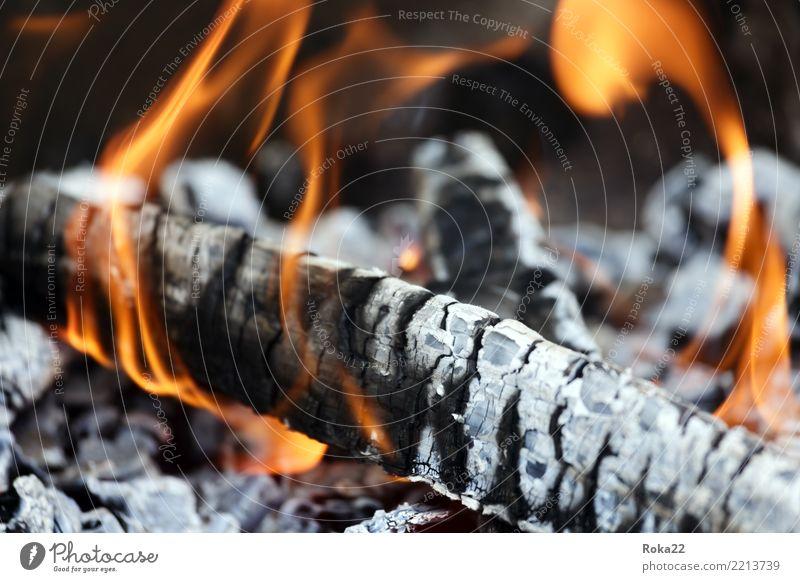 Nahaufnahme des Holzes brennt auf Feuer Tourismus Freiheit Tapete Natur Wärme Herd & Backofen Grill heiß natürlich schwarz gefährlich Ewigkeit Hintergrund
