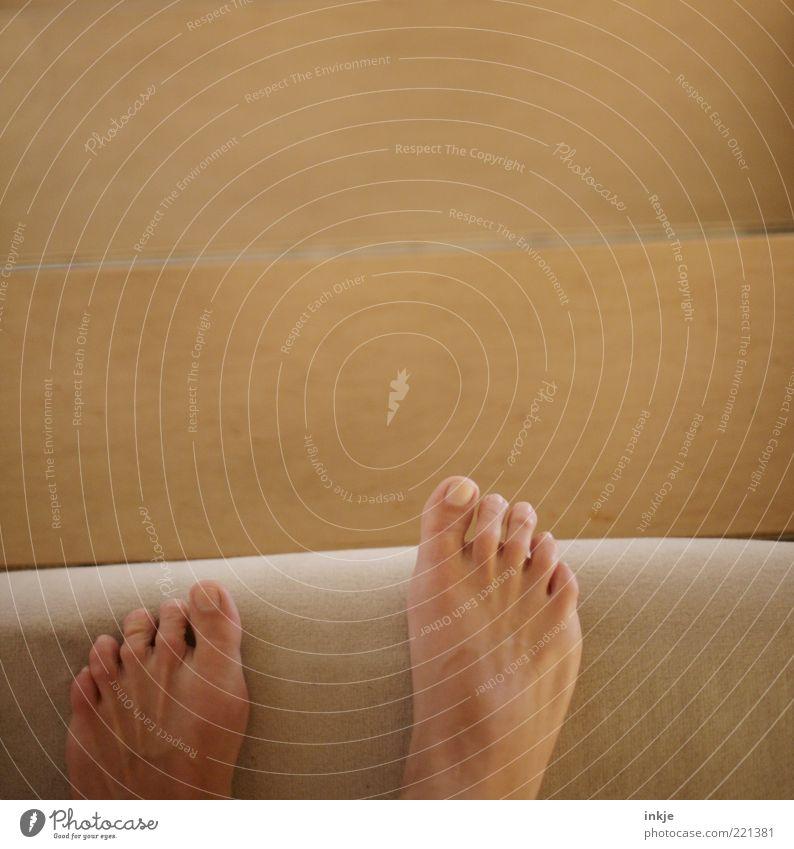 treppab Häusliches Leben Wohnung Fuß Treppe gehen stehen hoch kuschlig oben Sauberkeit Wärme weich braun gelb Stimmung Bewegung Leichtigkeit Barfuß abwärts