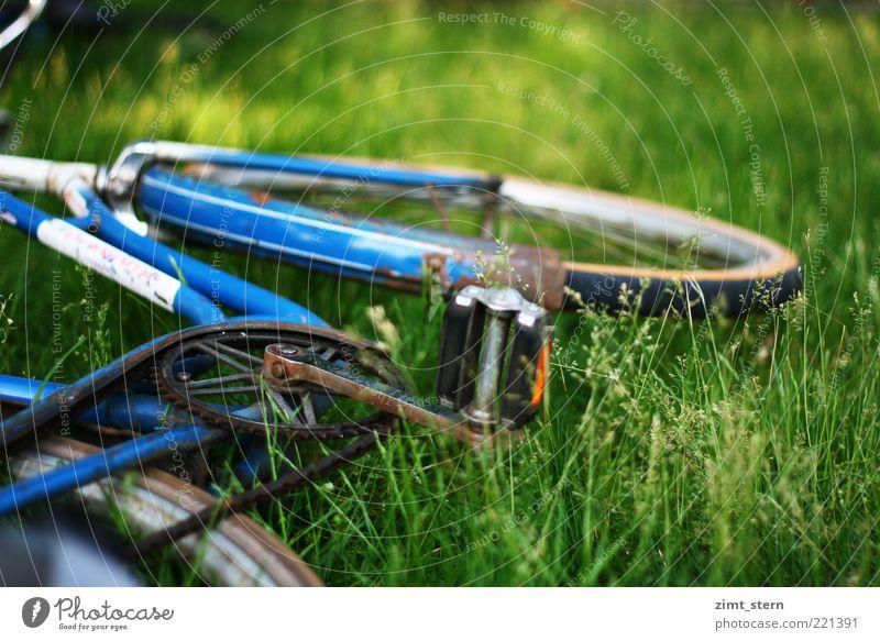 Blaues Rad im Grün alt grün blau Sommer Wiese Gras Fahrrad Metall liegen Gelassenheit Fahrradrahmen Pedal
