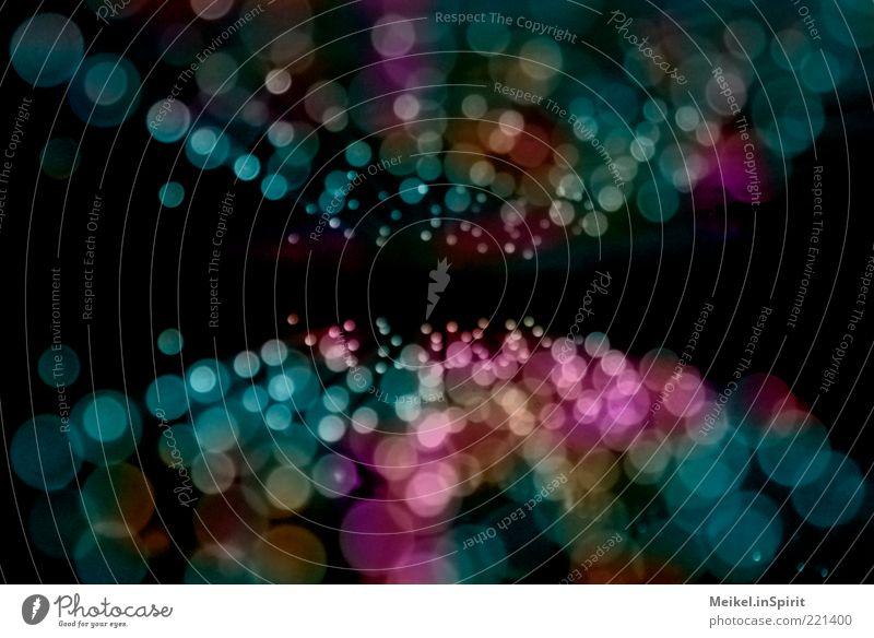 Lichtermeer blau schwarz kalt Beleuchtung verrückt frisch Ziel violett einzigartig Punkt Lebensfreude Mitte leuchten Dynamik Kreativität Idee