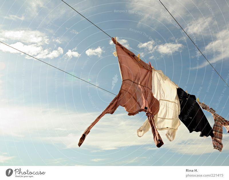 und noch mehr Wäsche auf der Leine Himmel blau Sommer ruhig Wolken Wetter frisch authentisch Wind Fröhlichkeit Klima Lebensfreude Schönes Wetter Seil Sauberkeit