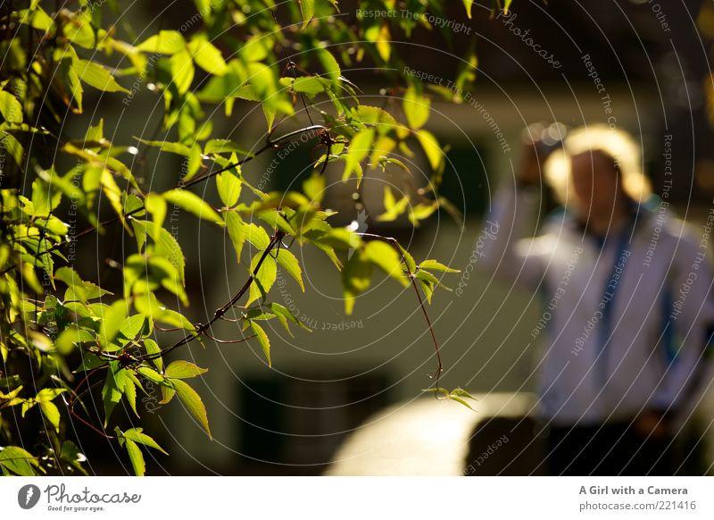 Loser-Treffen Ulm 14.11. Mensch grün Baum Blatt gelb Freizeit & Hobby leuchten Fotograf Unschärfe Fotografieren