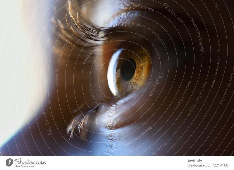 Nahaufnahme des schönen braunen Auges des kleinen Mädchens. Gesicht Kind Mensch Baby Frau Erwachsene weiß Farbe schließen nach oben jung hübsch Aussicht Wimpern