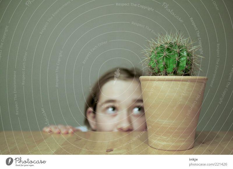 Versuchung exotisch Häusliches Leben Kind Gärtner Mädchen Gesicht Auge Nase Kaktus Topfpflanze Blumentopf Stachel Neugier Spitze stachelig grün Gefühle Stimmung