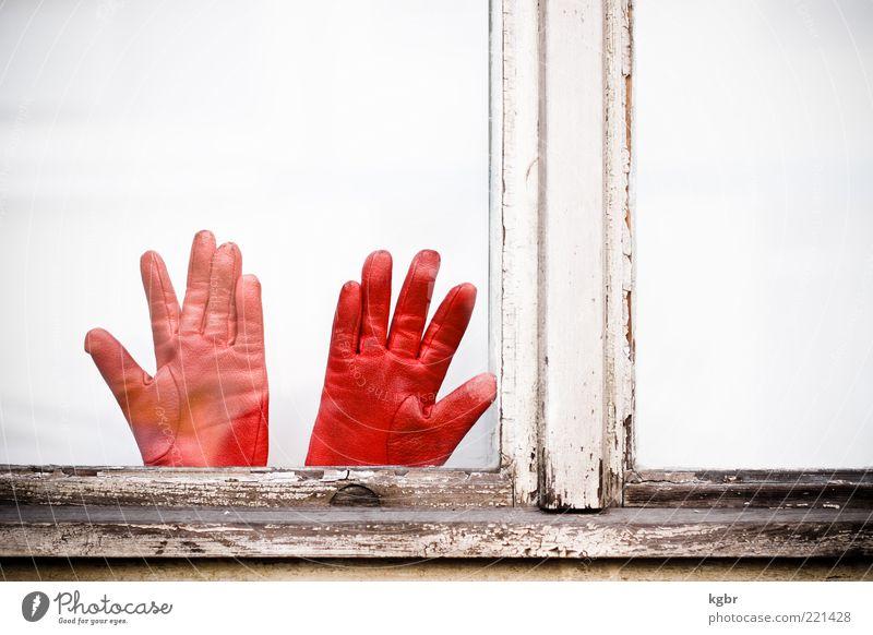 rot händle Fenster Leder Handschuhe Farbfoto Außenaufnahme Menschenleer Textfreiraum rechts Textfreiraum oben Tag Fensterrahmen Holz abblättern alt verwittert