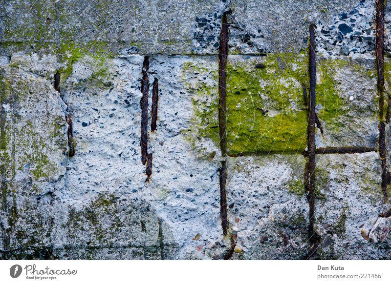 Betonierte Sumpflandschaft II Stein Wind Beton einzigartig Kreativität bizarr Moos Material Eisen Makroaufnahme Zerstörung Phantasie Natur Betonwand