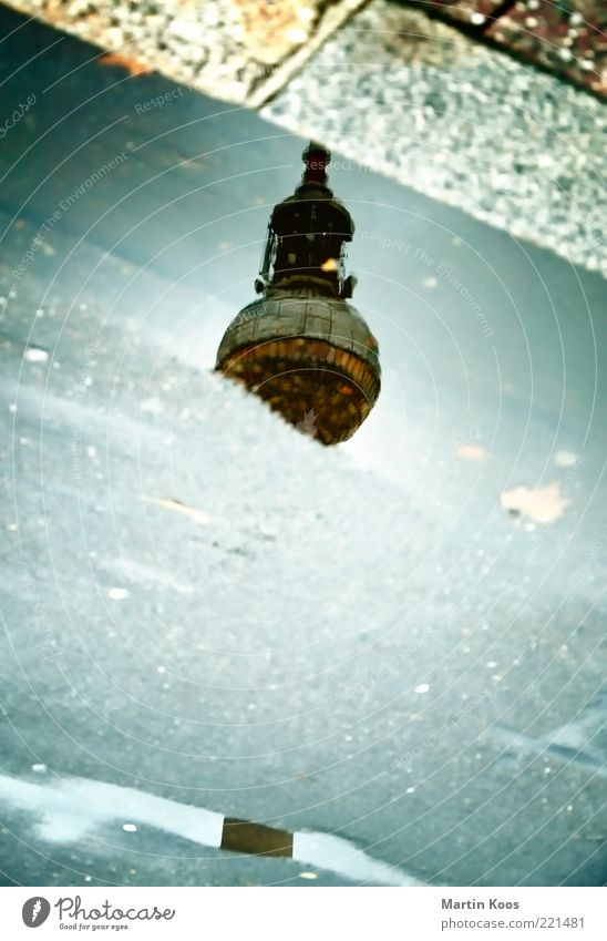 Streifzug Straße Berlin Freiheit Regen Wetter hoch groß authentisch Kultur Asphalt Kreativität Pfütze Berliner Fernsehturm Wasser