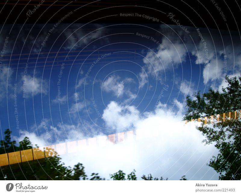 The difference between us Natur Himmel Baum Wolken Wetter fahren leuchten Scheibe Reflexion & Spiegelung Fensterblick Halogenlampe Halogenlicht