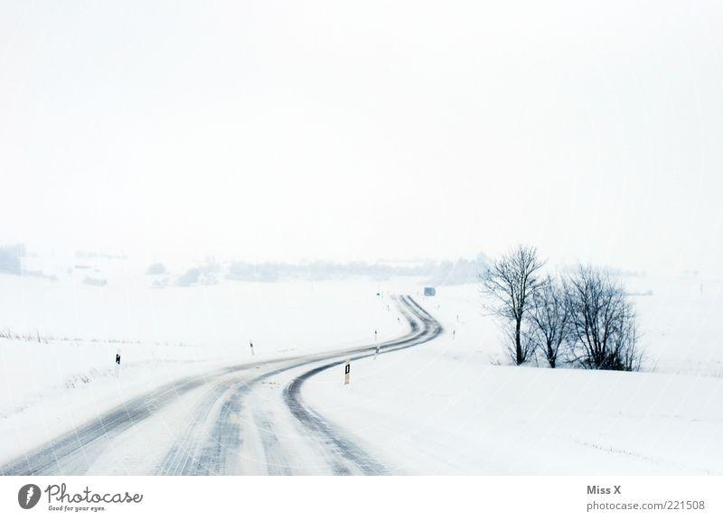 Die Straße Winter Eis Frost Schnee Verkehrswege Wege & Pfade kalt weiß Verkehrssicherheit Sträucher Schneelandschaft Landschaft Farbfoto Gedeckte Farben