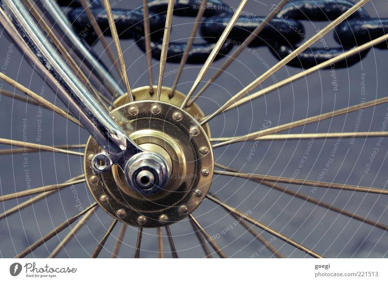 Eingangrad III Fahrrad Metall gold grau schwarz silber Nabe Speichen Fixie Singlespeed Farbfoto Außenaufnahme Detailaufnahme Menschenleer Tag Kette