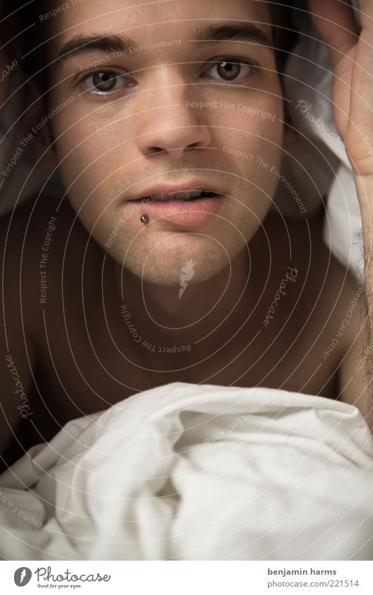 Bettgeflüster Mensch Jugendliche schön Gesicht Erholung Leben Gefühle Glück Wärme Erwachsene Zufriedenheit Haut liegen maskulin natürlich