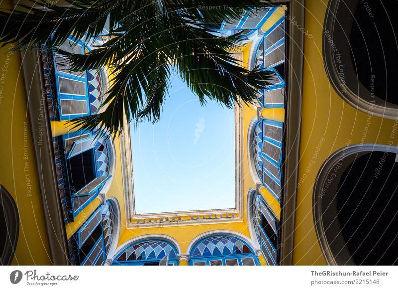 blick nach oben Himmel blau Stadt Haus gelb Gebäude Mauer offen Perspektive Hauptstadt Balkon Kuba Palme Havanna Gewölbe