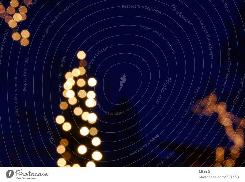 Es leuchtet Winter Baum leuchten hell blau Weihnachtsbaum Tanne Lichterkette Weihnachtsdekoration Farbfoto mehrfarbig Außenaufnahme abstrakt Menschenleer