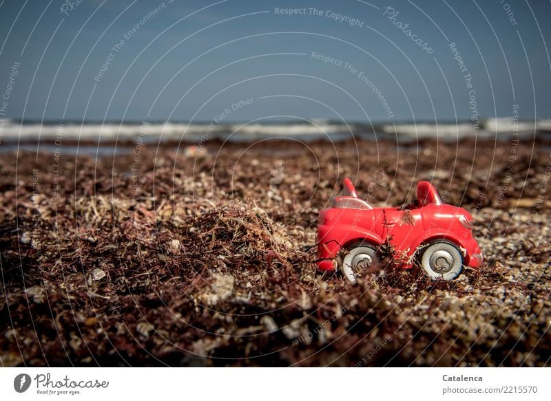 !Trash! 2017   Plastikmüll Himmel Pflanze blau Sommer Wasser weiß Landschaft Sonne Meer rot Strand schwarz Umwelt Küste braun PKW