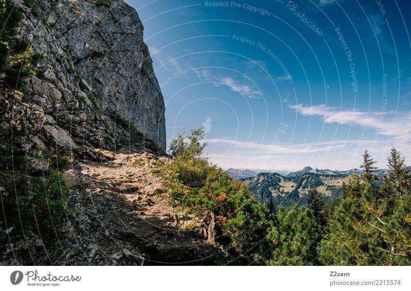 schönes Platzerl wandern Umwelt Natur Landschaft Himmel Sommer Schönes Wetter Sträucher Wald Felsen Alpen Berge u. Gebirge Gipfel gigantisch groß natürlich blau