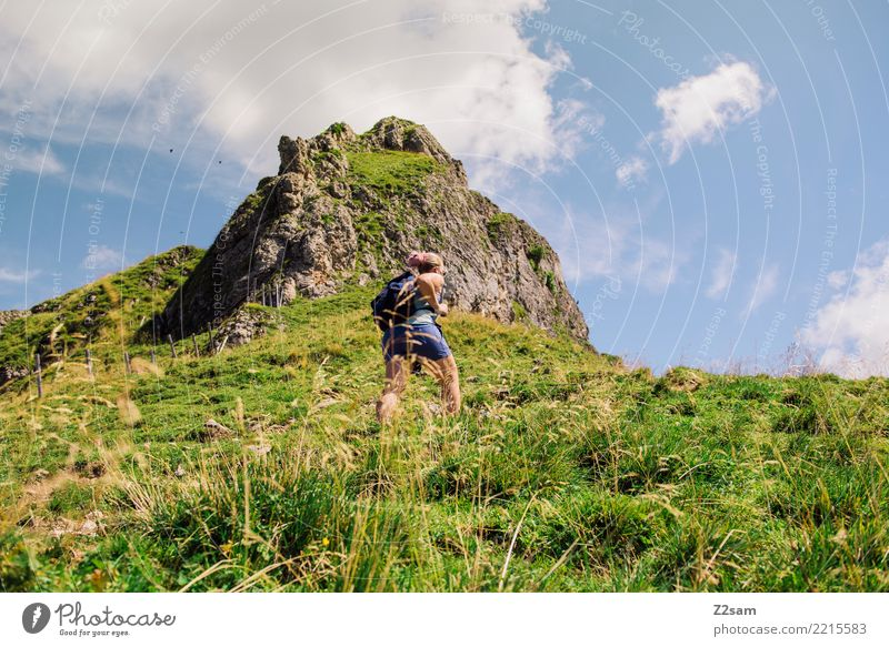 Aufstieg auf die oberbayerische Rotwand (Alpen) wandern Junge Frau Jugendliche 18-30 Jahre Erwachsene Natur Landschaft Himmel Sommer Schönes Wetter