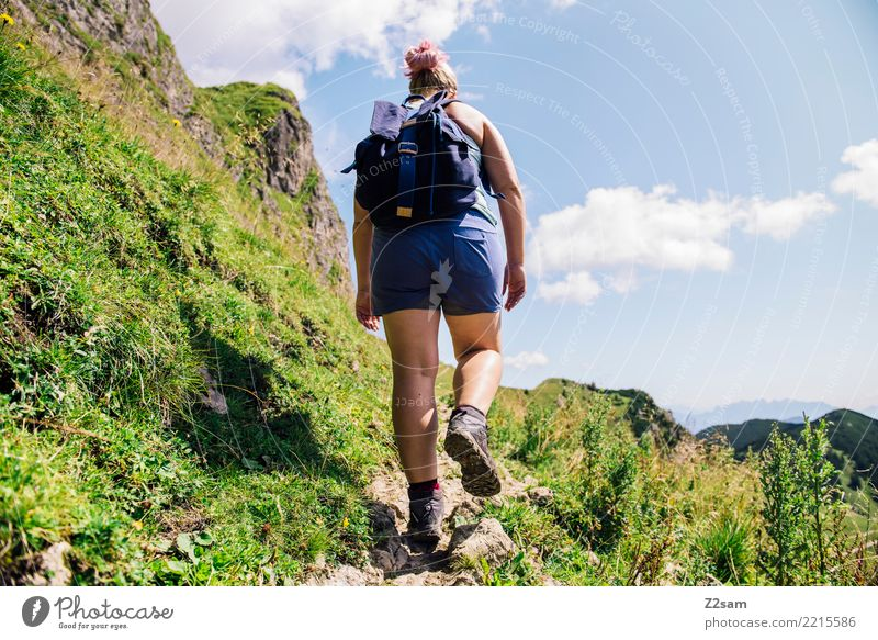 Aufstieg auf die oberbayerische Rotwand (Alpen) Berge u. Gebirge wandern Junge Frau Jugendliche 30-45 Jahre Erwachsene Natur Landschaft Sommer Gras Wiese