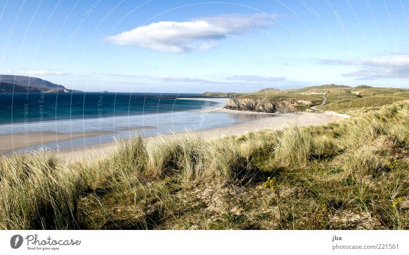 Düne {N4} Natur schön Meer Sommer Strand Ferien & Urlaub & Reisen ruhig Ferne Erholung Gras Freiheit Sand Landschaft Zufriedenheit Küste Wind