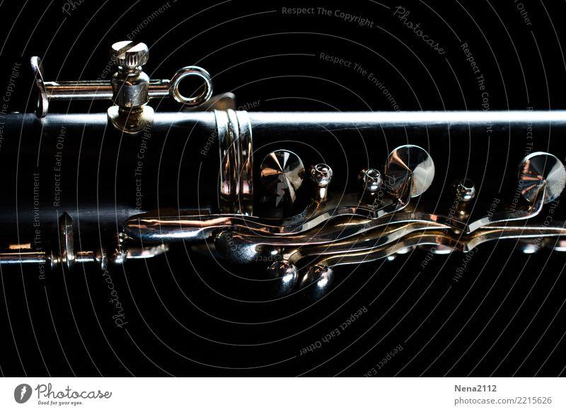 Klarinette 03 Freude dunkel Gefühle Kunst außergewöhnlich Stimmung Musik Kraft Erfolg Leidenschaft Konzert Bühne atmen Band Optimismus Ausdauer