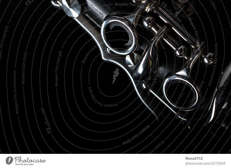 Klarinette 02 Kunst Musik Musik hören Konzert Open Air Bühne Oper Band Musiker Orchester Gefühle Stimmung Freude Fröhlichkeit Zufriedenheit Lebensfreude