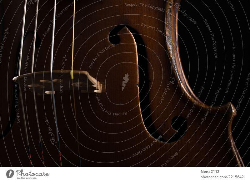 Geige 08 Kunst Musik Musik hören Konzert Open Air Bühne Oper Band Musiker Orchester Gefühle Stimmung Freude Zufriedenheit Lebensfreude Vorfreude Begeisterung