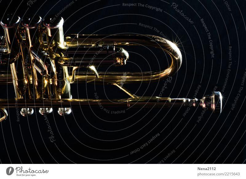 Trompete 04 Kunst Musik Musik hören Konzert Open Air Bühne Oper Band Musiker Orchester Gefühle Stimmung Freude Lebensfreude Erfolg Kraft Leidenschaft fleißig