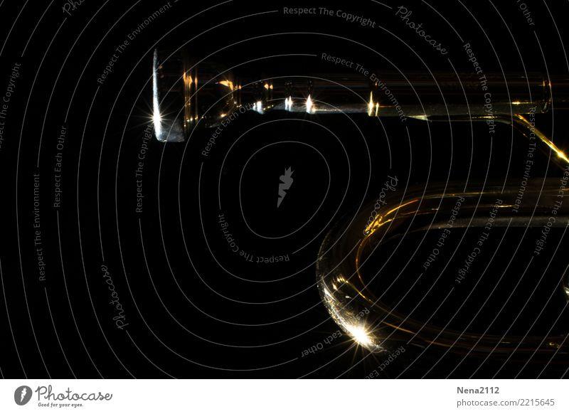 Trompete 03 Kunst Musik Musik hören Konzert Open Air Bühne Band Musiker Orchester Gefühle Stimmung Freude Lebensfreude Euphorie Optimismus Erfolg Kraft