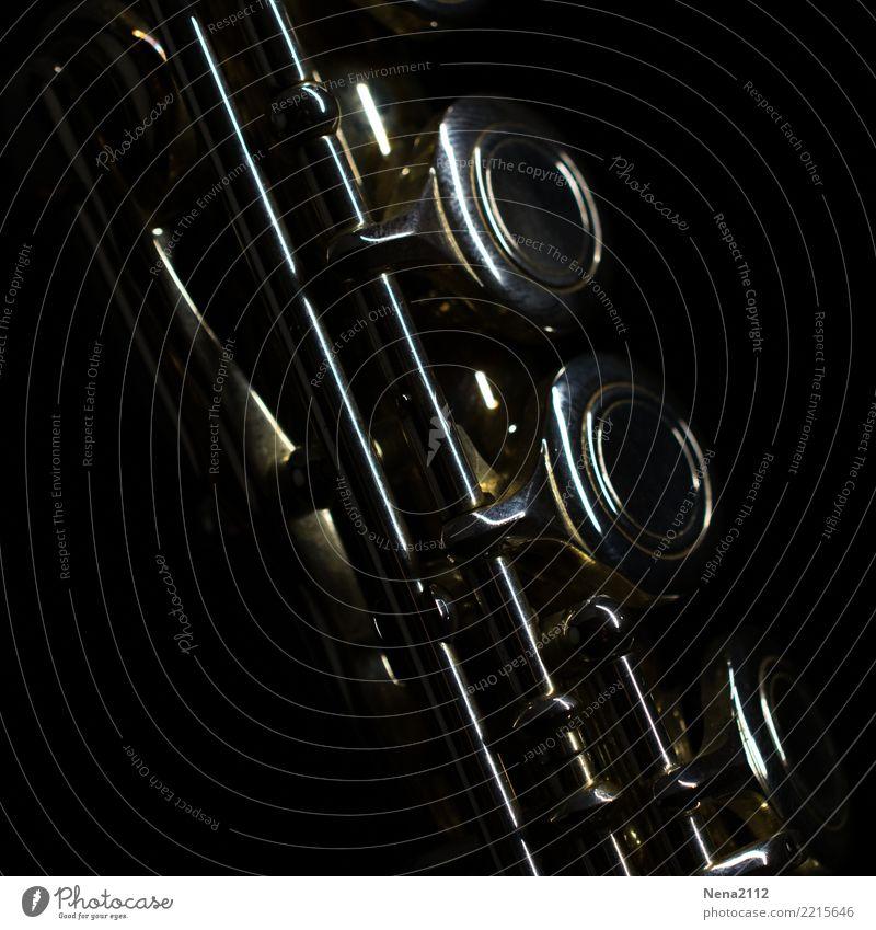 Querflöte - Q1 Kunst Musik Musik hören Konzert Open Air Bühne Oper Band Musiker Orchester rund Holzblasinstrumente Tasteninstrumente Musikinstrument