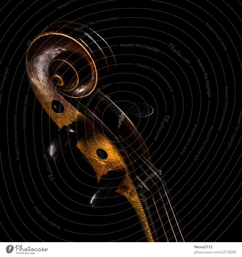 Geige - Q7 Kunst Musik Musik hören Konzert Open Air Bühne Oper Band Musiker Orchester Cello Holz Streichinstrumente Saiteninstrumente geigenschnecke